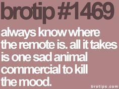lol. just one sad animal commercial...  brotip 1469