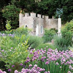 Allium Flowers, Pink Flowers, Farm Gardens, Outdoor Gardens, Allium Schoenoprasum, Rooftop Garden, Fire Pit Backyard, Garden Borders, Summer Beauty