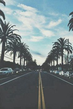 breezy, cali, california, cars, palm trees, photography, streets ...