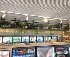 Caltex (Ascot) - Artificial Plants in ply husk & Other Decorations door Ascot, Artificial Plants, Display Shelves, Potted Plants, Vines, Pots, Decorations, Space, Outdoor Decor