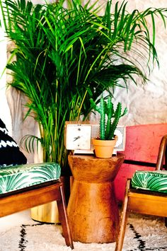 Tropic greens: The taste of Petrol and Porcelain | Interior design, Vintage Sets and Unique Pieces www.petrolandporcelain.com Our Palm Spring love seats with a palm plant always gets us ready for spring vibes!
