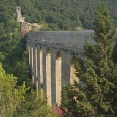 Medieval Bridge and Aqueduct, Ponte Delle Torri, Spoleto, Umbria, Italy, Europe Stampa province of Perugia
