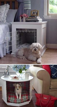 Top 27 DIY Ideas How to Make a Perfect Living Space for Pets