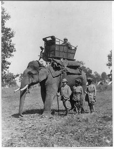 HRH The Prince of Wales in 1876- Nepal/India border region on Elephant - British Colonial India