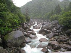 大自然の川。