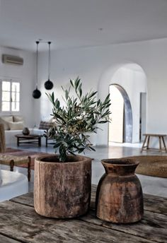 Home Design - Green Plant - Wood Pot - Vintage Style - Caprina by Canus - Olive Oil & Wheat Protein