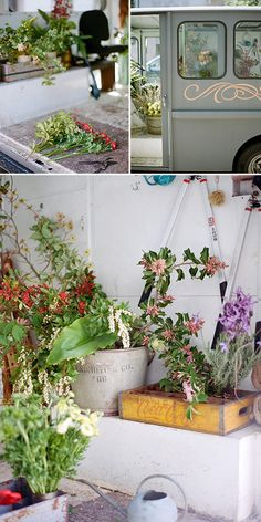 the petaled sf, a flower shop on the go