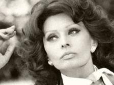 Dedicated to the Italian actress, style icon, bombshell and living legend SOPHIA LOREN! Hollywood Stars, Classic Hollywood, Old Hollywood, Maria Callas, Tilda Swinton, Brigitte Bardot, Elizabeth Taylor, Classic Actresses, Actors & Actresses