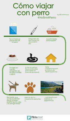 Cómo viajar con perro por Ruta Perruna