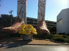 North Star Mall's iconic giant boots get fancy for the #CityOfYellowRoses