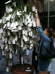 Yoko Ono's Wish Tree Project