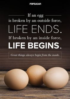 """Quote: """"If an egg is broken by an outside force, life ends. If broken by an inside force, life begins. Great things always begin from the inside."""" Lesson to learn: Real change can only come from within. Source: Shutterstock"""