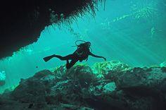 Diving in Casa Cenote, Tulum // Mexico