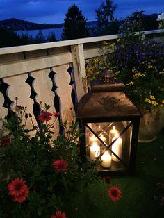 A wonderful late summer evening on the terrasse - my garden Margeritten by Inger Johanne :)