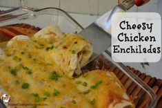 Cheesy Chicken Enchiladas Recipe :: PocketChangeGourmet.com