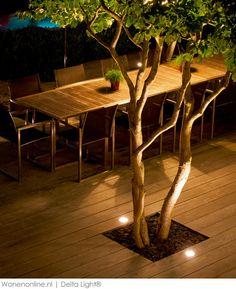 5 x meer sfeer in je tuin met tuinverlichting van Delta Light®