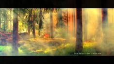 Kamakura – Der Schaminische Schöpfergeist – Epic Meditation Music by Cha. Kamakura, Nature Music, Meditation Music, Songs, Painting, Inspiration, Videos, Youtube, Art