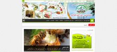 elaourassia.com web design by dailybarid