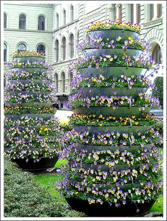Pansy Towers...this is amazing!