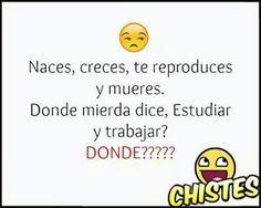 Dondeeeeee???