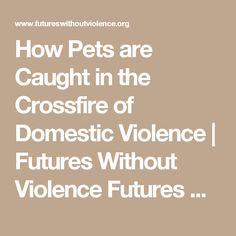 How Pets are Caught in the Crossfire of Domestic Violence | Futures Without Violence Futures Without Violence