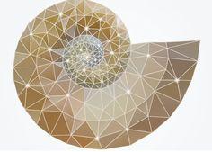 La Matemática Devocional: Celebrando la Sabiduría y belleza de las matemáticas