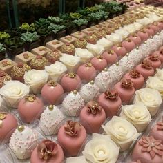 Wedding Favors, Wedding Gifts, Wedding Cakes, Mini Cakes, Cupcake Cakes, Biscuit Decoration, Graduation Cupcakes, Wilton Cake Decorating, Pink Table