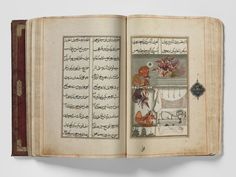 """The Gulshan-i Ishq was written in by Nusrati court poet to Sultan Ali Adil Shah II of Bijapur. """"Fit language there is none for the heart's deepest things. Asian Gallery, Mughal Empire, Philadelphia Museum Of Art, Powerful Images, Creative Play, Asian Art, Art Museum, Storytelling, Language"""