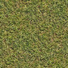 Grass+02+seamless.jpg (1600×1600)