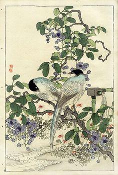 Bairei Flower and Bird Prints 1899 - Chinoiserie print