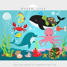 Summer Bulletin Boards For Daycare Discover Under the ocean - sea clip art fish seaweed dolphin whale jellyfish starfish shell coral octopus treasure chest pearl turtle crab Under The Ocean, Under The Sea Theme, Life Under The Sea, Decoration Creche, Plakat Design, Wale, Ocean Themes, Pre School, Sea Creatures