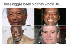 I know there's Morgan Freeman and Tommy Lee Jones, but can anyone tell me who the other two are? I think the guy in the upper right corner looks familiar. These men are fantastic! Stupid Funny Memes, Funny Relatable Memes, Funny Facts, Funny Stuff, Funny Shit, Funny Things, Funniest Things, Stupid Stuff, Funny Cute