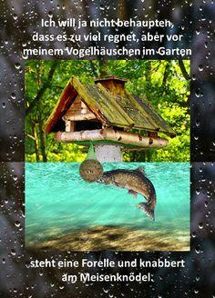 Die 32 Besten Bilder Von Regen Spruche Lustig In 2019 Frases