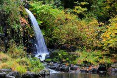 Cedar Creek Waterfall, Washington, United States.