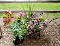 wheel barrel container garden!  Drill holes for drainage or put a thick layer of rocks in bottom, beautiful!