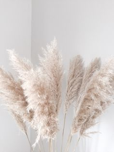 pampas grass for the stair case garland to add that 'gatsby' feel