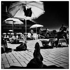 Summer In The City Omaggio a @isabella_sommati #summerinthecity #summerinthecityseries #2017 #milano #italia #citylife #urbanlife #igers #igersmilano #ig #igmilano  #ig_milano #blackandwhite #domenicomirigliano #mobilephotography