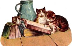 Oblaten Glanzbild scrap die cut chromo  Katze cat  Buch book