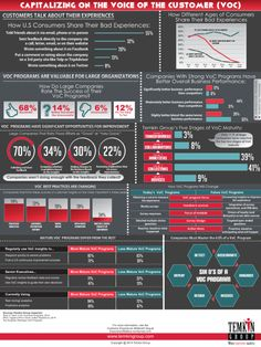 state of the voice of the customer program Infographic