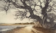 Chrissy Norman Nacton Shores revisited
