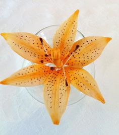 {Delightful orange Tiger Lily by lisascake's}