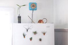 DIY Mini Clay Pot Magnets  @Matty Chuah Merrythought