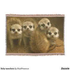 Baby meerkats throw blanket Photo Memories, Throw Blankets, Party Hats, Are You The One, Family Photos, Art Pieces, Pattern, Baby, Family Pictures