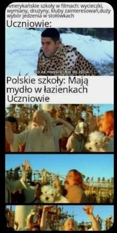 Polish Memes, Funny Memes, Hilarious, Nyan Cat, Meme Lord, History Memes, School Memes, Malec, Good Mood
