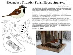 Вы любите фетровых птичек? Я очень! Именно любовь к птицам из фетра привела меня к рукодельнице из США Сьюзен Джордан Беннет (Susan Jordan Bennett). Её наработки — настоящий клад, как для хендмейдеров, так и для любителей птиц! Дело в том, что Сьюзен в 2004 году переехала в Downeast Maine, где основала настоящую птичью ферму (Downeast Thunder Farm).