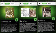 """¿Para qué sirve la app """"Clasificación maya de suelos""""?"""