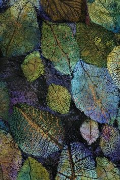 Textile Art 435582595210558338 - Lesley Richmond is a textile artist inspired by natural forms and textures. She works with textile processes to simulate organic surfaces. Source by karapnarkurt Patterns In Nature, Textures Patterns, Print Patterns, Art Et Nature, Leaf Art, Natural Forms, Fabric Art, Textile Art, Fiber Art