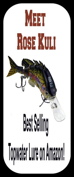 Learn more here now for more info on fishing ideas. Bass Fishing Tackle, Bass Fishing Lures, Bait, Trout, Amazon, Ideas, Fishing Jig, Amazons, Riding Habit