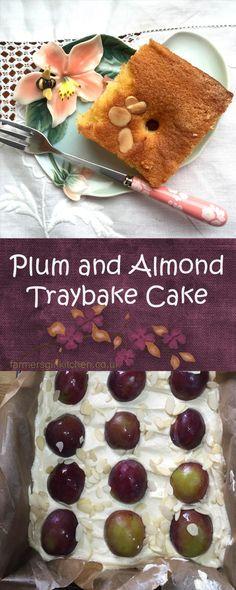 Plum and Almond Traybake - almond sponge hides luscious plump plums