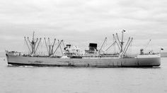 MV Port Lyttelton, a refrigerated Cargo Ship, built by R & W Hawthorn, Leslie & Co at Hebburn for Port Line Ltd. Completed in March '47. 7,413 grt, 487.9ft length,63.7ft beam & 28.4ft draught. Powered by single 6 cylinder Doxford type Oil Engine to a single screw. Grounded off Florida with extensive damage in '53. Scrapped at Faslane arriving there on 07/06/72
